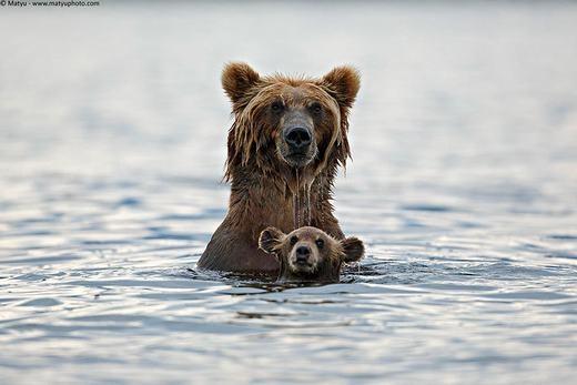 Mẹ con tớ đang tập bơi đấy!