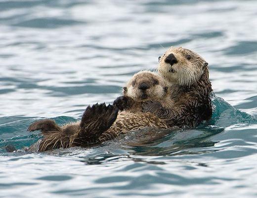 Bơi thôi!!!