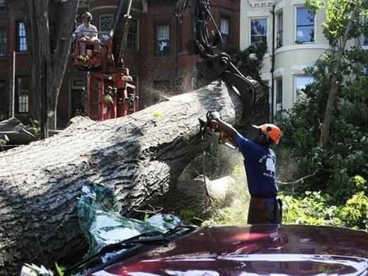 Hôm 29/6/2012, một cơn bão đã bất ngờ tấn công vùng phía đông nước Mỹ, đặc biệt là ở bang Virginia, West Virginia và Ohio, khiến 13 người chết và thiệt hại về tài sản là rất lớn. Theo thống kê, hàng nghìn cây cối, nhà cửa bị san phẳng, hơn 4 triệu người chịu cảnh mất điện kéo dài.