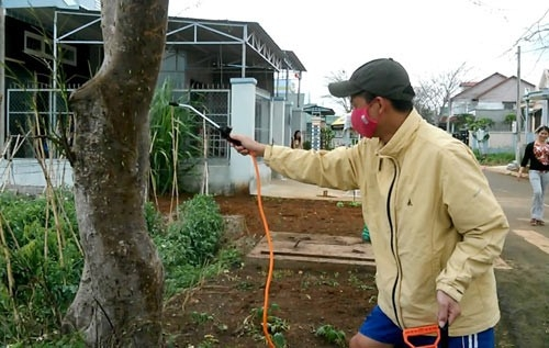 Hoảng hồn với khả năng giết người của bọ ve cực nguy hiểm