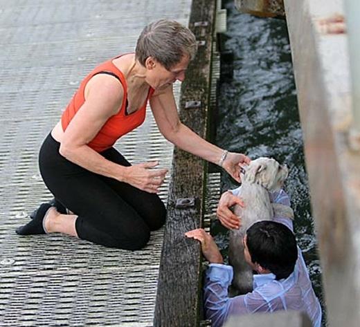 Cảm phục chàng trai nghĩa hiệp cứu chú chó bị gió thổi bay xuống biển