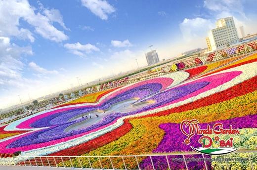 Một đóa hoa khổng lồ được tạo nên từ sự kết hợp của hàng ngàn đóa hoa với màu sắc khác nhau.