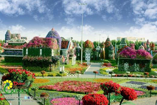 Theo người quản lý ở đây, từ tháng 5 trở đi, nhiệt độ nơi này nóng gắt không tiện cho việc tham quan nên vườn hoa phải đóng cửa.