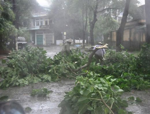 Người dân cần cảnh báo với cơn bão đang đổ bộ vào Quảng Ninh