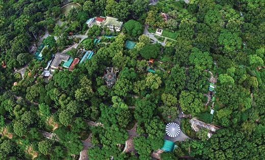 Thảo Cầm Viên là nơi bảo tồn động thực vật có tuổi thọ đứng hàng thứ 8 trên thế giới. Hình ảnh những cây xanh cao và tỏa bóng mát rượi cùng những khu vui chơi, khu di tích lịch sử đã ghi dấu ấn rất sâu trong lòng mỗi người dân Sài Gòn.