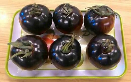 Không thể tin nổi 200.000đ vẫn không mua được 1kg cà chua