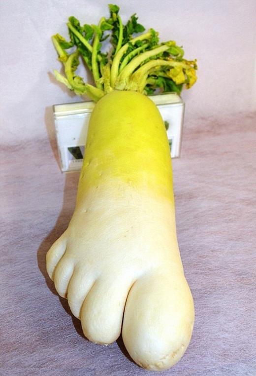 Chân ngọc chân ngà