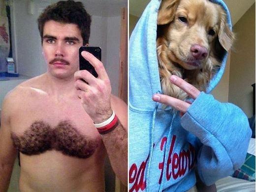 Tự cạo lông ngực thành hình thù lạ, cho khuôn mặt thú cưng thay khuôn mặt mình...