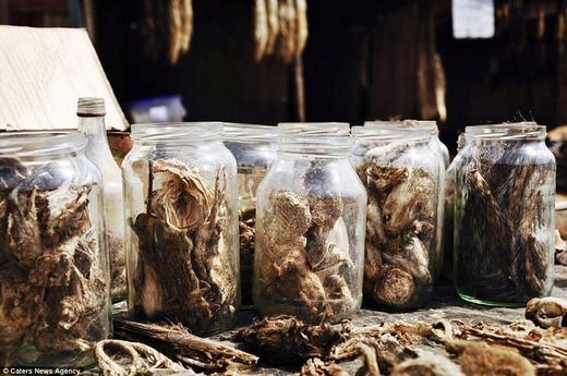 Theo những người nơi đây, các con vật đã khô sẽ được bỏ vào từng lọ. Nó sẽ có tác dụng chữa bệnh tùy theo mục đích mỗi người.