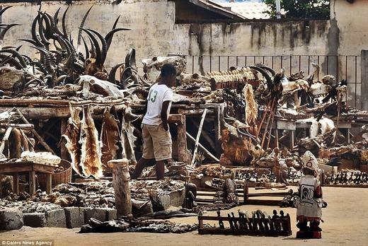 Khu chợ đã tồn tại 40 năm nay, và là nơi ám ảnh nhất đối với người dân châu Phi.