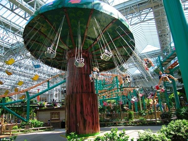 Khu mua sắm Mall of America ở St. Paul, Minnesota, Hoa Kỳ có nhiều thú vui trong nhà, chẳng hạn như đu quay hình cây nấm khổng lồ này.