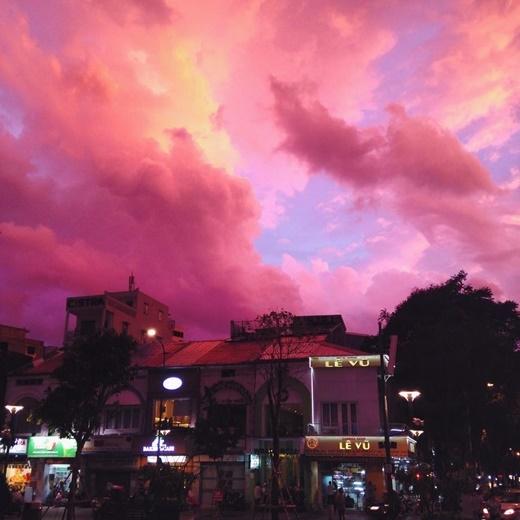 Cả Sài Gòn như vừa được một cơn mưa màu hồng ghé thăm. (FB Vương Bá Chung)