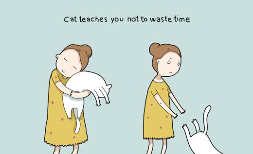 Các chú mèo sẽ không để bạn ôm chúng lâu hơn 1 phút đâu