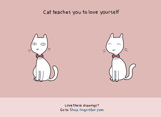 Và cuối cùng, bạn sẽ biết yêu thương bản thân hơn khi nuôi 1 con mèo đó!