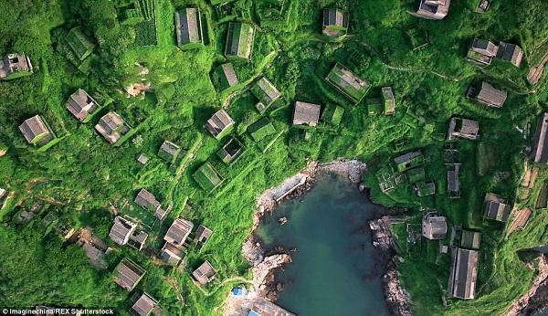 Tại làng chài trên đảo Shengshan thuộc phía đông tỉnh Chiết Giang, Trung Quốc, rêu phong và dây leo có ở khắp mọi nơi, chằng chịt trên những bức tường đá, đan dệt qua những ô cửa sổ và cửa chính, bò dọc theo những lối đi như mê cung.
