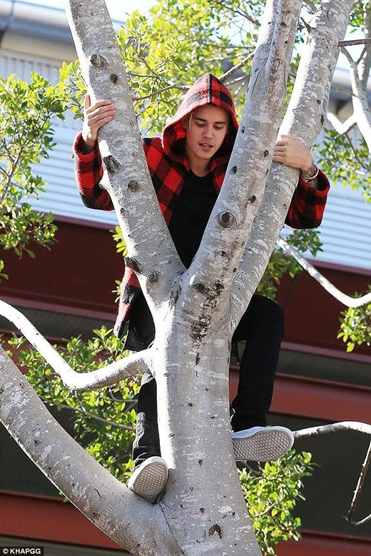 Chán chê, Justin lại leo xuống...