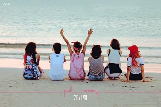 A Pink bị ném đá vì fan chê hình tượng nhóm nữ khác