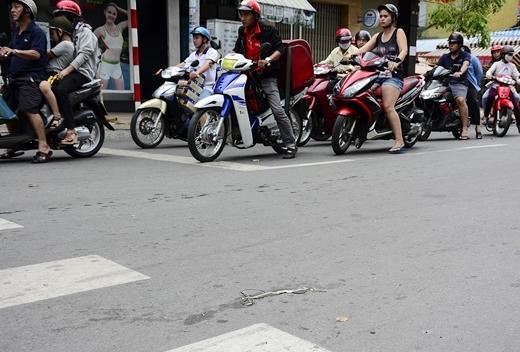 Một con rắn bị đập chết tại giao lộ Nguyễn Trãi - Huỳnh Mẫn Đạt (quận 5)