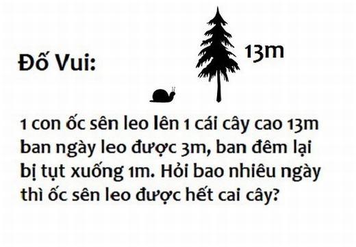 9. Đố bạn bao nhiêu ngày thì con ốc sên leo lên hết cái cây.