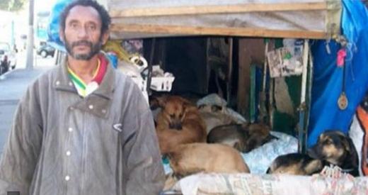 Dù sống bằng số tiền ít ỏi, một người đàn ông vô gia cư vẫn cố gắng chăm sóc những chú chó bị bỏ rơi mà mình đưa về được.