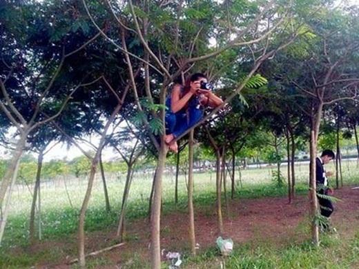 Leo cây điệu nghệ như Ngộ Không (nguồn: facebook Minh Thành)