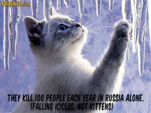 Băng đông thành cục trên cành cây và rơi xuống phía dưới cũng khiến khoảng 100 người chết mỗi năm chỉ riêng ở Nga.