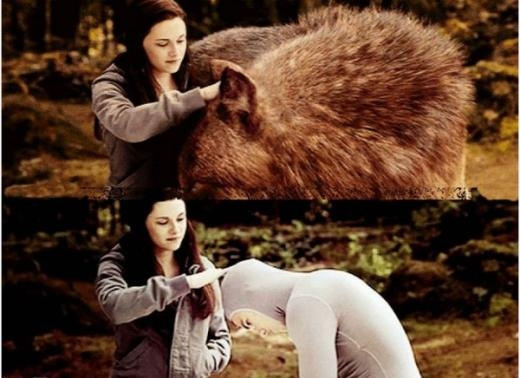 Con thú khổng lồ thực chất chỉ là... (PhimTwilight)