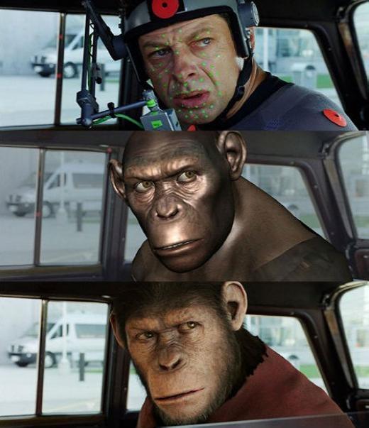 Một chú khỉ đột đã được hình thành từ một người đội mũ bảo hiểm.