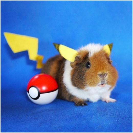 Nhân vật Pikachu nổi tiếng với màu vàng đặc trưng