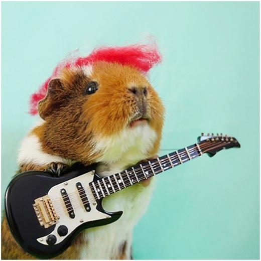 Tay chơi nhạc Rock sành điệu.
