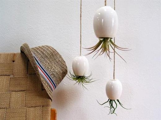 Bạn cũng có thể dùng những lọ sứ để thay thế như trong hình.
