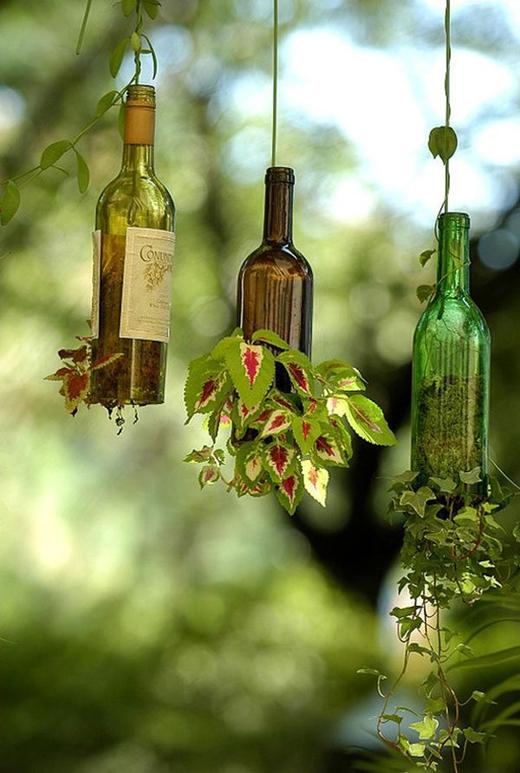 Bạn có thể tận dụng những chai rượu vang đã qua sử dụng để làm một lọ trồng cây treo lủng lẳng, biến góc nhà thêm lung linh.