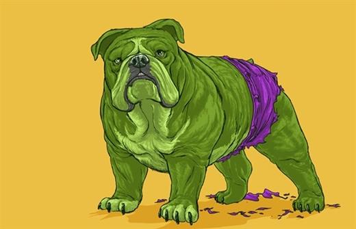 Một sự kết hợp tuyệt vời giữa chú chó Pitt Bull hùng dũng và Người khổng lồ xanh (Hulk) mạnh mẽ