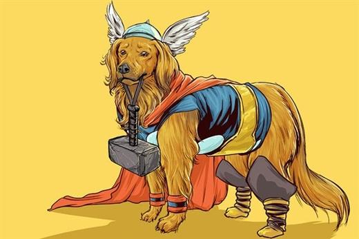 Thần sấm Thor có bộ lông thiệt mượt mà trong lốt chú chó Golden Retriever