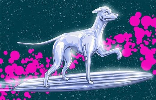 """Chú chó giống Greyhound được """"chọn mặt gửi vàng"""" vào vai anh chàngSilver Surferthuộc chủng cao quý nhất vũ trụ"""
