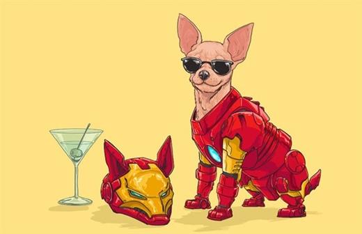 Giống chó sang chảnh Chihuahua vào vai Người sắt Iron Man giàu có