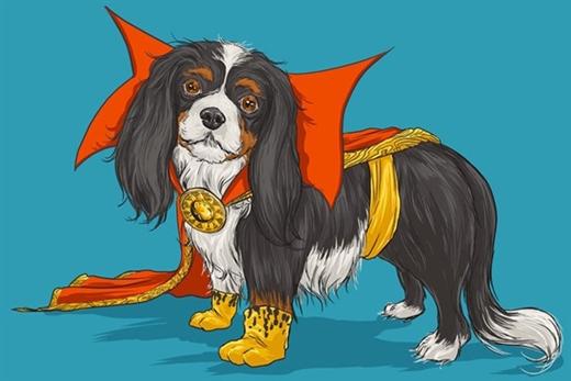 Phù thủy mạnh nhất vũ trụ lại có hình dáng đáng yêu khi biến thành chú chó cảnh King Charles Cavalier Spaniel.