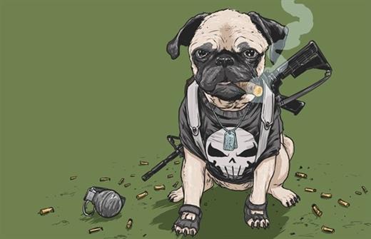"""""""Xem chú chó Pug đeo khẩu súng của nhân vật Punisher ngầu chưa này"""""""