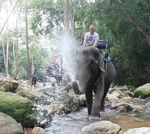 Những chú voi hiền lành sẽ mang lại cho bạn những cảm giác khó quên.