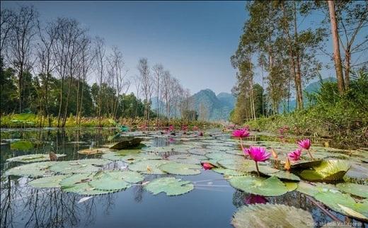 Suối Yến nằm trong khu di tích thắng cảnh Chùa Hương, thuộc xã Hương Sơn, huyện Mỹ Đức, Hà Nội.