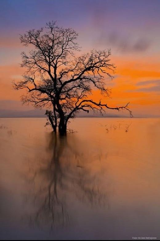 Hoàng hôn đầy ám ảnh ở hồ thủy điện Sông Hinh.
