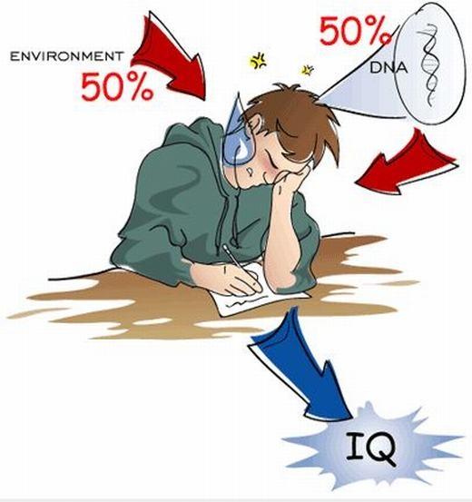 Thư giãn với loạt câu hỏi thử thách IQ ở mức cực dễ