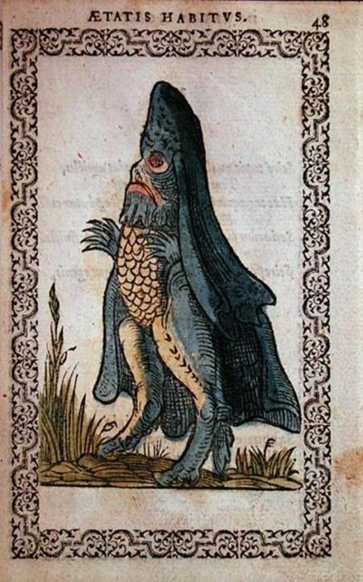 Truyền thuyết kể rằng, loài Cá giám mục biển đã xuất hiện vào ngoài khơi vùng biển Ba Lan vào năm 1531, với phần dưới cơ thể giống cá nhưng phần trên lại có hình dáng giống như một tu sĩ. Người ta cũng tin rằng loài Cá giám mục có liên quan đến một con mực khổng lồ được tìm thấy vào tháng 11 năm 1861, với chiếc đuôi dài và rất nhiều xúc tu. Trên hết, chiếc đầu của chúng cũng có hình dạng giống như chiếc mũ mà những tu sĩ hay đội.