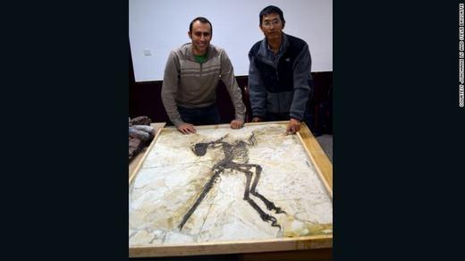 Ngay khi phát hiện, các nhà khoa học đã đặt tên cho con khủng long có cánh này là Zhenyuanlong, tức rồng Zhenyuan.
