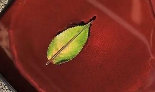 Bạn có thể xác định phương hướng chỉ với 1 cây kim, bằng cách xát 1 đầu vào quần áo nhằm biến chiếc kim thành một cục nam châm. Bây giờ đặt chiếc kim đó vào 1 chiếc lá và để trên một vũng nước. Hướng Bắc sẽ là hướng đầu bị cọ xát.