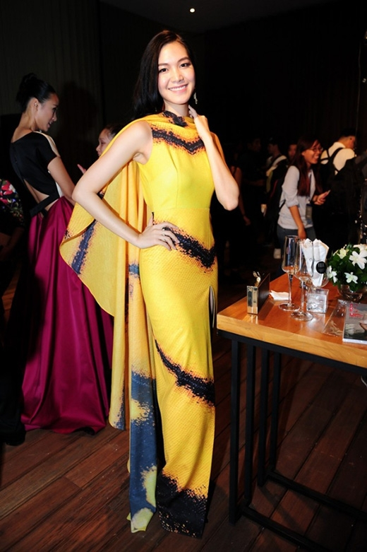 Hoa hậu Thùy Dung cũng diện một thiết kế có họa tiết và màu sắc tương tự. Bộ váy không xấu nhưng kiểu trang điểm nhợt nhạt đã làm giảm hẳn sức hút của Hoa hậu Việt Nam 2008.