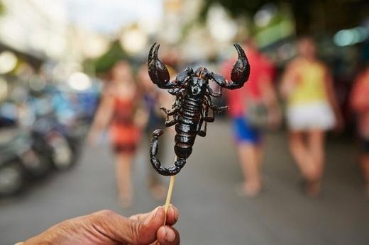 """Chẳng hạn như trải nghiệm ăn bọ cạp chiên khi du lịch ở các nước châu Á (hoặc thử bất cứ trò """"điên khùng"""" nào ở nơi bạn đến) tất nhiên sẽ làm bạn sáng tạo hơn và do đó trở thành một người thú vị."""