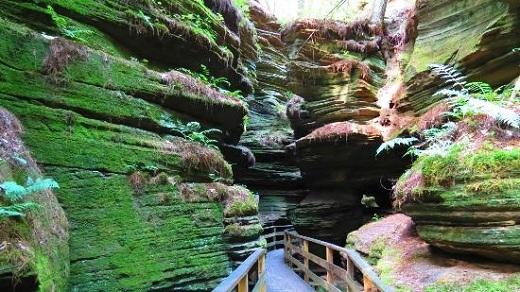 Không phải khe núi nào cũng được hình thành từ đá sa thạch đỏ và vàng nhưWitches GulchởWisconsin.