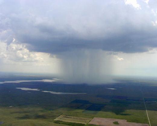Hình ảnh của một cơn mưa to có màu xanh đậm.