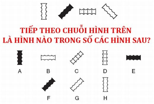 Câu 6: Hình nào?